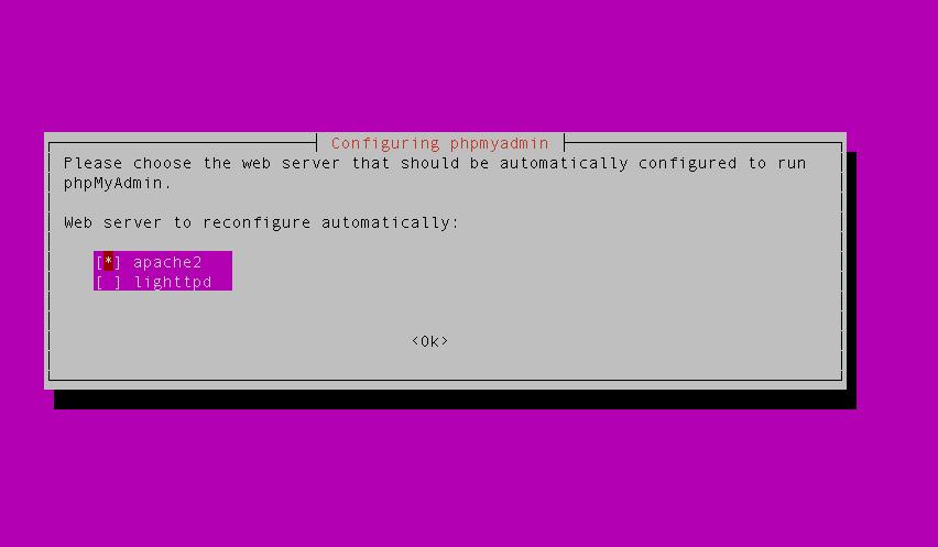 configure_web_server